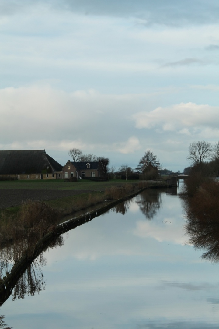 IMG_9511-spiegeling
